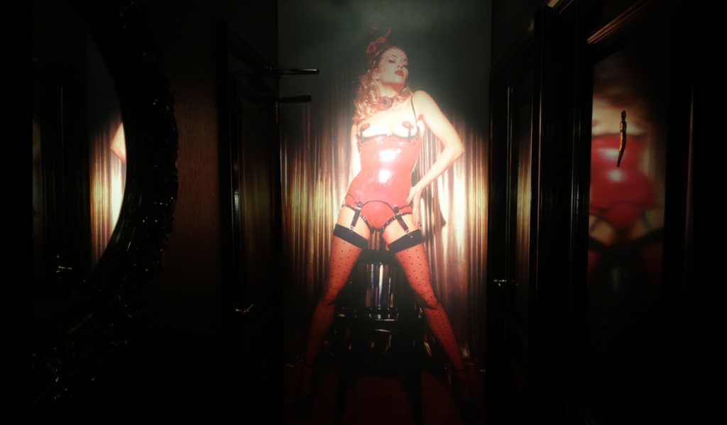 Picture Hall Mayfair Stripclub & Gentlemans Club Brothel
